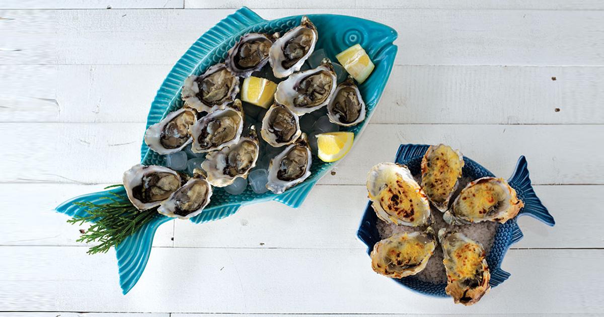 prova de ostras visitar aveiro